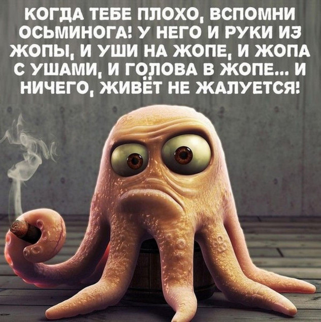 Когда тебе плохо - вспомни осьминога!