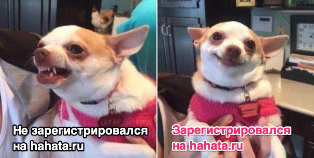 Когда зарегистрировался на hahata.ru :)