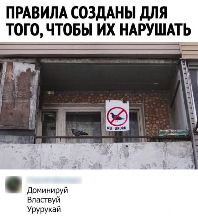 Правила созданы, чтобы их нарушать!