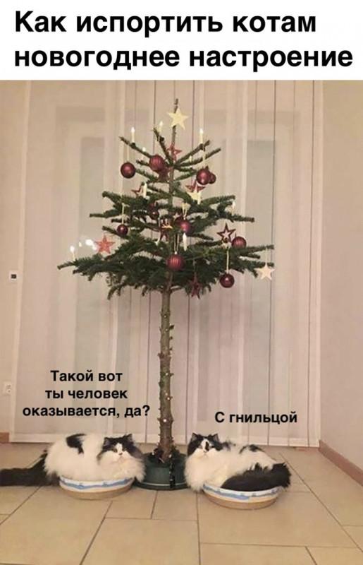Как испортить новогоднее настроение
